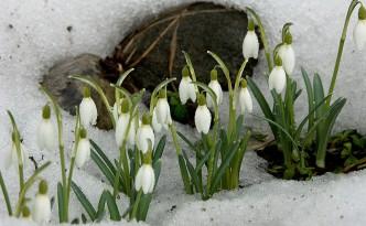 Народные приметы марта.
