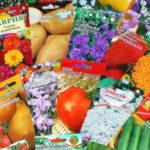 Залог будущего урожая или Как правильно выбрать семена для посадки.